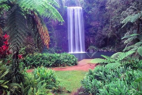 8779152-millaa-millaa-falls-of-wooroonooran-national-park-in-tropical-queensland-australia